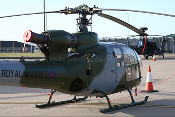 G-ZZLE - Royal Navy: Royal Marines Westland Gazelle HT.2
