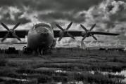 CCCP-11171 - Aeroflot Antonov An-10 aircraft