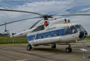 93+51 - Germany - Air Force Mil Mi-8S aircraft