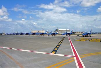 """E165 - France - Air Force """"Patrouille de France"""" Dassault - Dornier Alpha Jet E"""