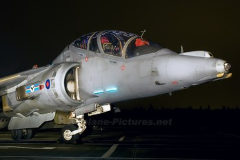 ZH659 - Royal Air Force British Aerospace Harrier T.12