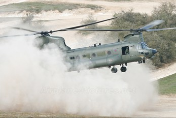 ZH901 - Royal Air Force Boeing Chinook HC.3