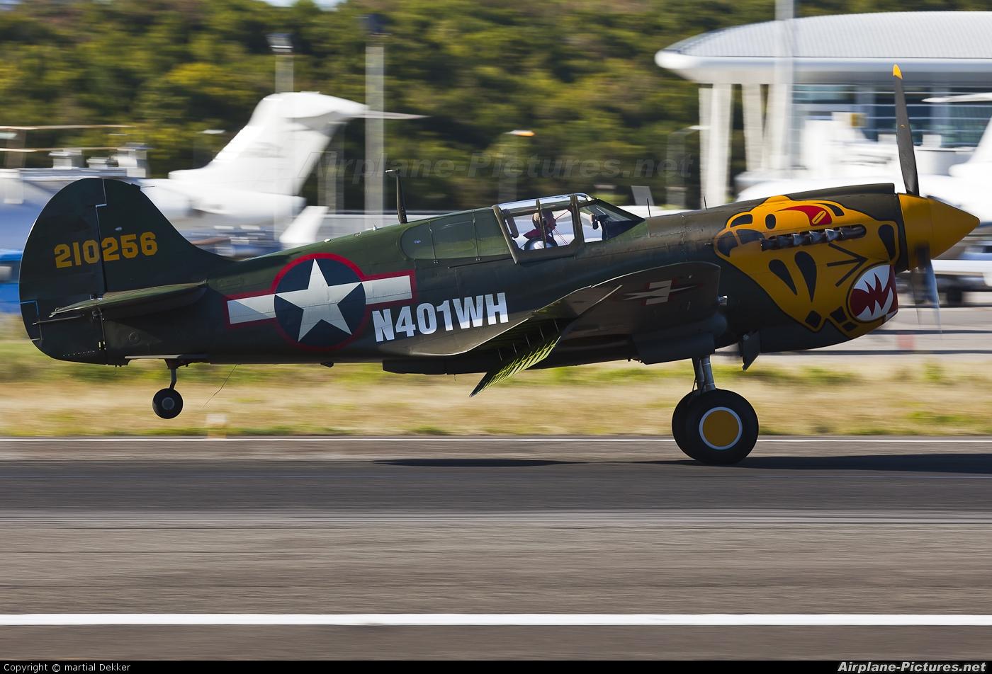 Private N401WH aircraft at Sint Maarten - Princess Juliana Intl