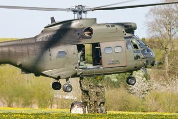 ZA935 - Royal Air Force Westland Puma HC.1