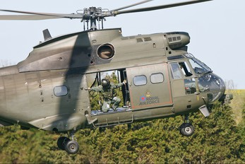 XW231 - Royal Air Force Westland Puma HC.1