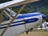 S5-DAM - Private Piper PA-18 Super Cub aircraft