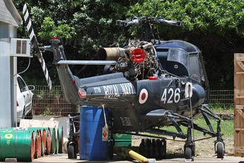 ZU-HAS - Private Westland Wasp HAS.1