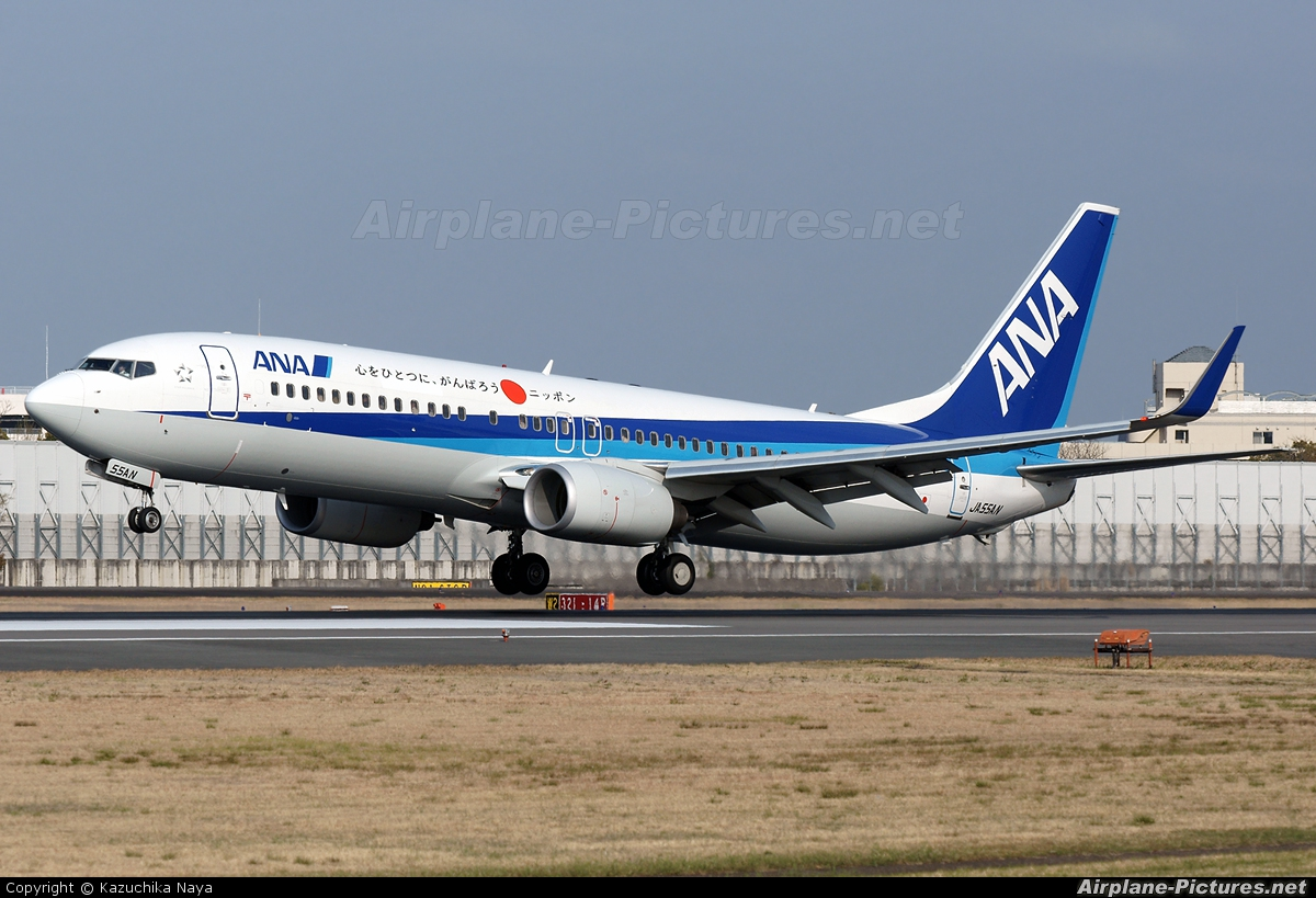 ANA - All Nippon Airways JA55AN aircraft at Osaka - Itami Intl