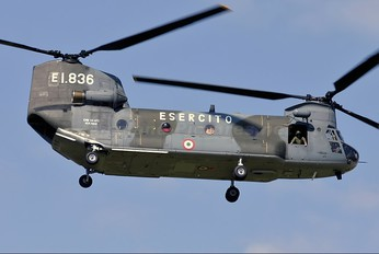 MM81441 - Italy - Army Boeing CH-47C Chinook