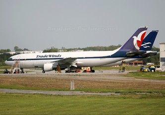 N504TA - Tradewinds Airlines Cargo Airbus A300