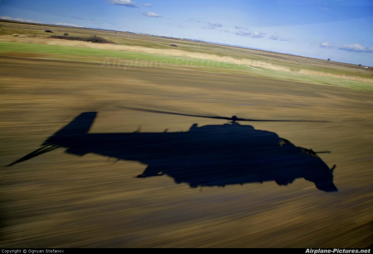 Bulgaria - Air Force 146 aircraft at In Flight - Bulgaria
