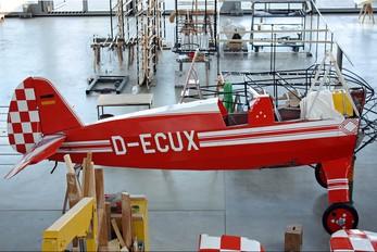 D-ECUX - Private Focke-Wulf Fw.44J Stieglitz