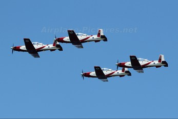 494 - Israel - Defence Force Hawker Beechcraft T-6A Texan II