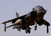 ZD990 - Royal Navy British Aerospace Harrier T.8 aircraft