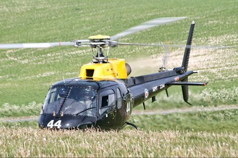 ZJ244 - British Army Aerospatiale AS350 Squirrel HT.1 & 2