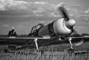 G-HAMM - Private Yakovlev Yak-50 aircraft