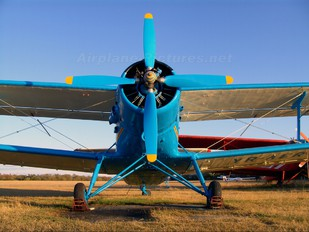 YR-AER - Private Antonov An-2
