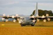 84003 - Sweden - Air Force Lockheed Tp84 Hercules aircraft
