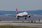 TC-JLL - Turkish Airlines Airbus A320 aircraft