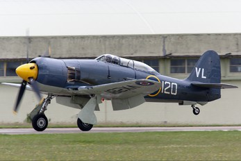 G-RNHF - Naval Aviation Hawker Sea Fury T.20