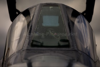 XX736 - Royal Air Force Sepecat Jaguar GR.1