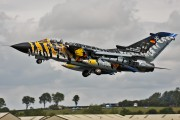 Germany - Air Force 46+33 image