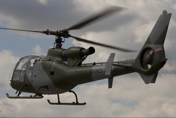 G-ZZLE - Royal Navy: Royal Marines Westland Gazelle HT.2