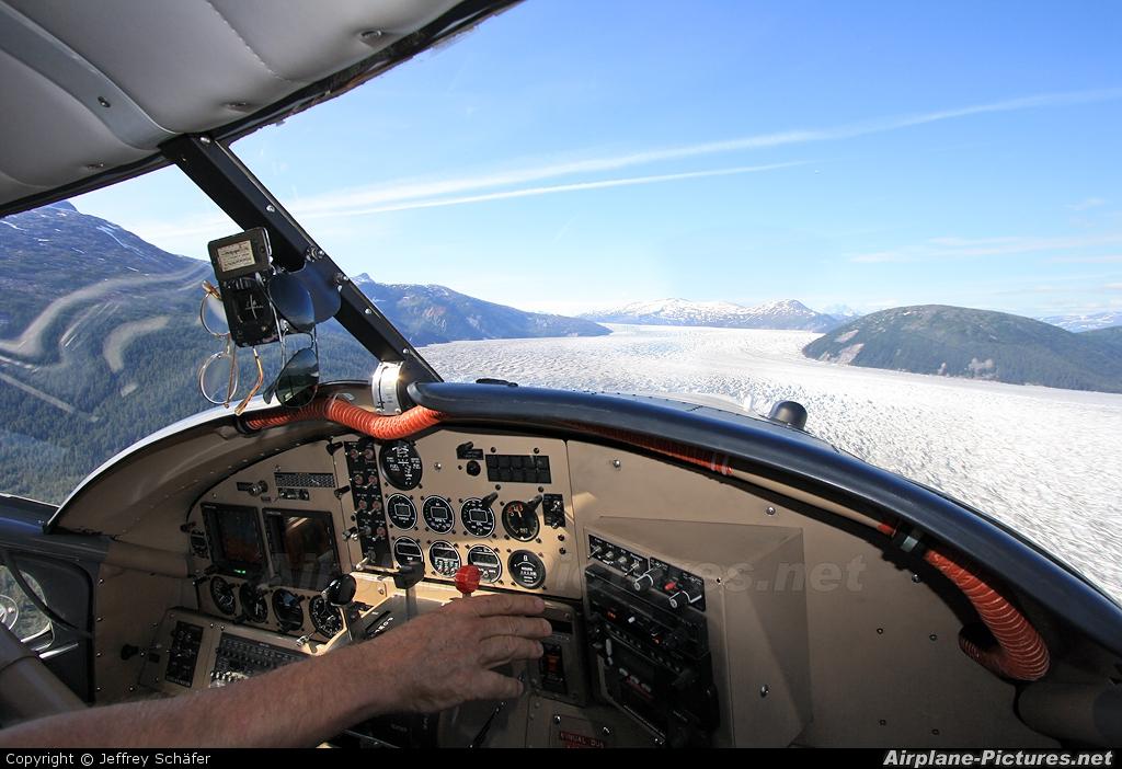 Wings of Alaska N339AK aircraft at In Flight - Alaska