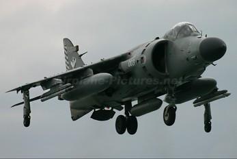 ZH804 - Royal Navy British Aerospace Sea Harrier FA.2