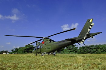 H36 - Belgium - Air Force Agusta / Agusta-Bell A 109BA