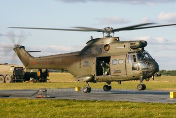 XW226 - Royal Air Force Westland Puma HC.1