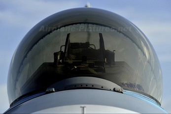 - - USA - Air Force General Dynamics F-16D Fighting Falcon
