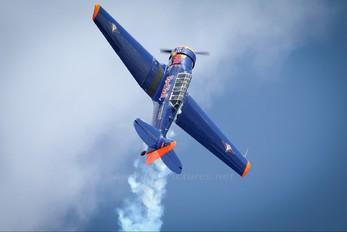 D-FHGL - The Flying Bulls North American Harvard/Texan (AT-6, 16, SNJ series)