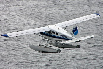 N68010 - Private de Havilland Canada DHC-2 Beaver