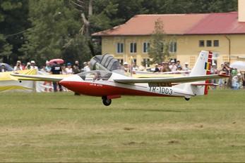 YR-1003 - Romanian Airclub IAR Industria Aeronautică Română IAR IS-35 Acro