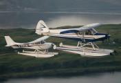N5362X - Private Piper L-18 Super Cub aircraft