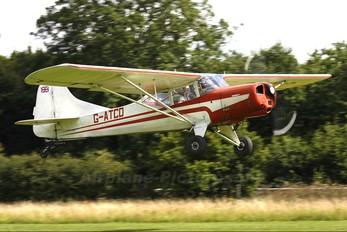 G-ATCD - Private Beagle A113 Husky