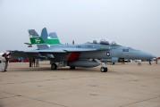 166791 - USA - Navy McDonnell Douglas F/A-18F Super Hornet aircraft