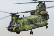 D-663 - Netherlands - Air Force Boeing CH-47D Chinook aircraft