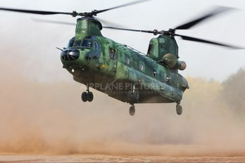 D-663 - Netherlands - Air Force Boeing CH-47D Chinook