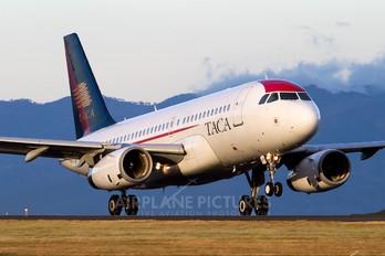 N477TA - TACA Airbus A319