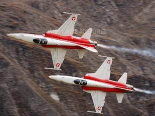 J-3088 - Switzerland - Air Force:  Patrouille de Suisse Northrop F-5E Tiger II