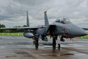 01-2003 - USA - Air Force McDonnell Douglas F-15E Strike Eagle aircraft