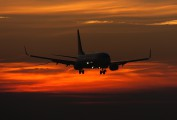 EI-DCW - Ryanair Boeing 737-800 aircraft