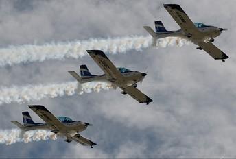 - - WeFly Team FlySynthesis Texan