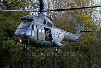 ZA937 - Royal Air Force Westland Puma HC.1