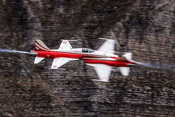 J-3081 - Switzerland - Air Force:  Patrouille de Suisse Northrop F-5E Tiger II