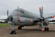 15 - France - Navy Dassault ATL-2 Atlantique 2 aircraft