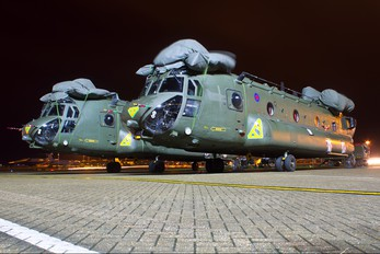 ZD981 - Royal Air Force Boeing Chinook HC.4
