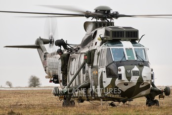 ZE425 - Royal Navy Westland Sea King HC.4